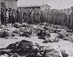 Holocaust dead political prisoners