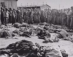 Holocaust dead political prisoners